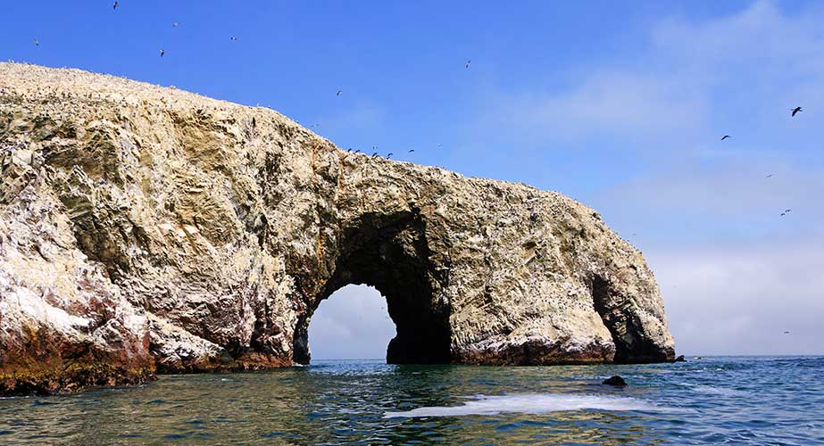 Day 4: Full Day Paracas - Ica