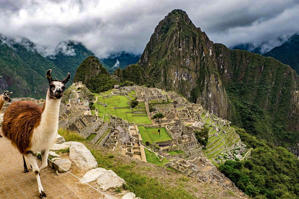 Day 9: Aguas Calientes | Machu Picchu - Cusco