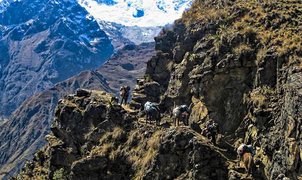 Day 4: Choquequiraw | Choquequiraw Pass- Rio Blanco- Maizal