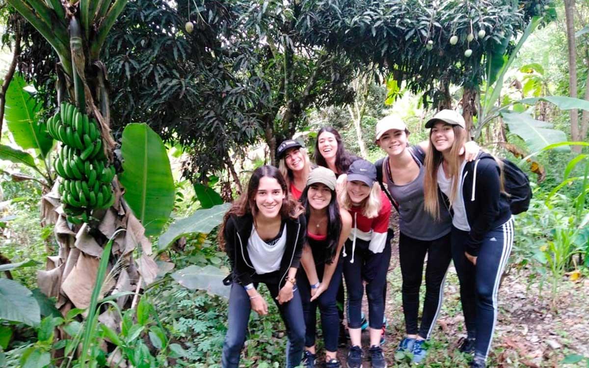 Day 7: Totora | Cloud Forest – La Playa –Lucmabamba
